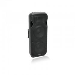 Акустическая система VFM-2215AP 2-Way Speaker